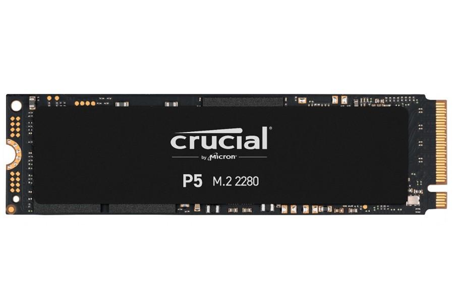 crucial-03102.jpg
