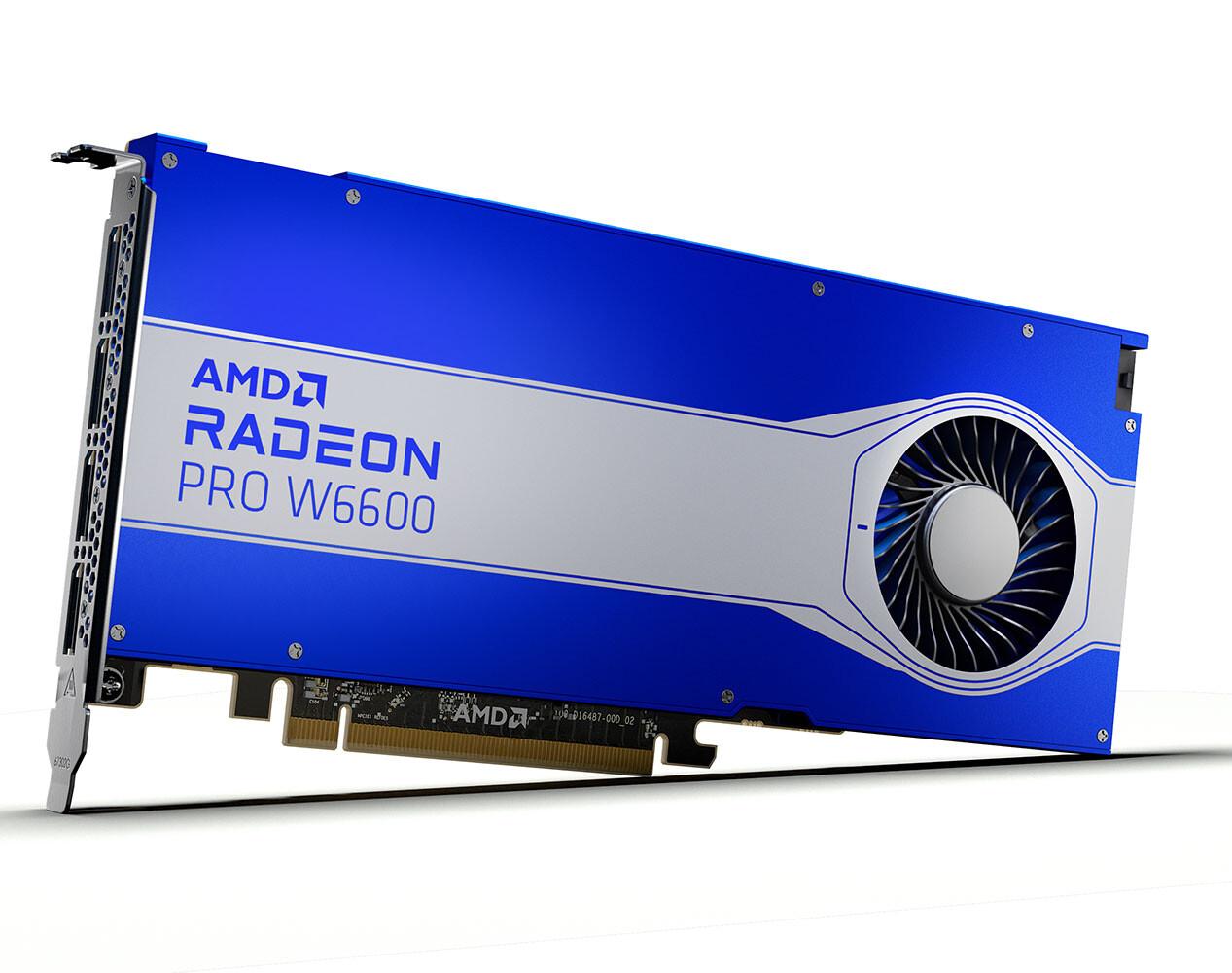 Radeon_Pro_w6600_1.jpg